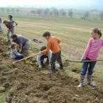 Haie de Francis et Teddy Monnier, Dombresson, avril 2009. Jeunes forces au travail. Photo : Alain Lugon.
